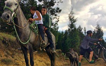 kids on horseback and mountain biker