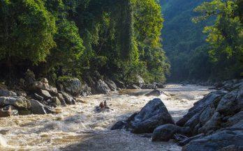 rafting rapids rio samana jungle