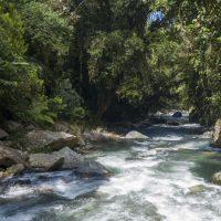 River near medellin melcocho beach