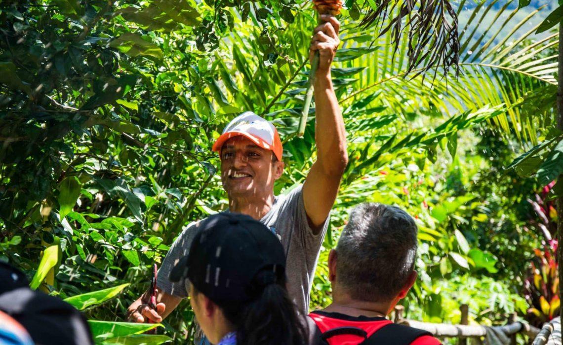 cocoa guide colombia