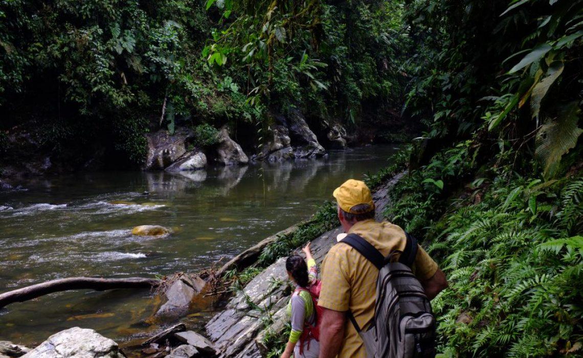 jungle river hikers trek
