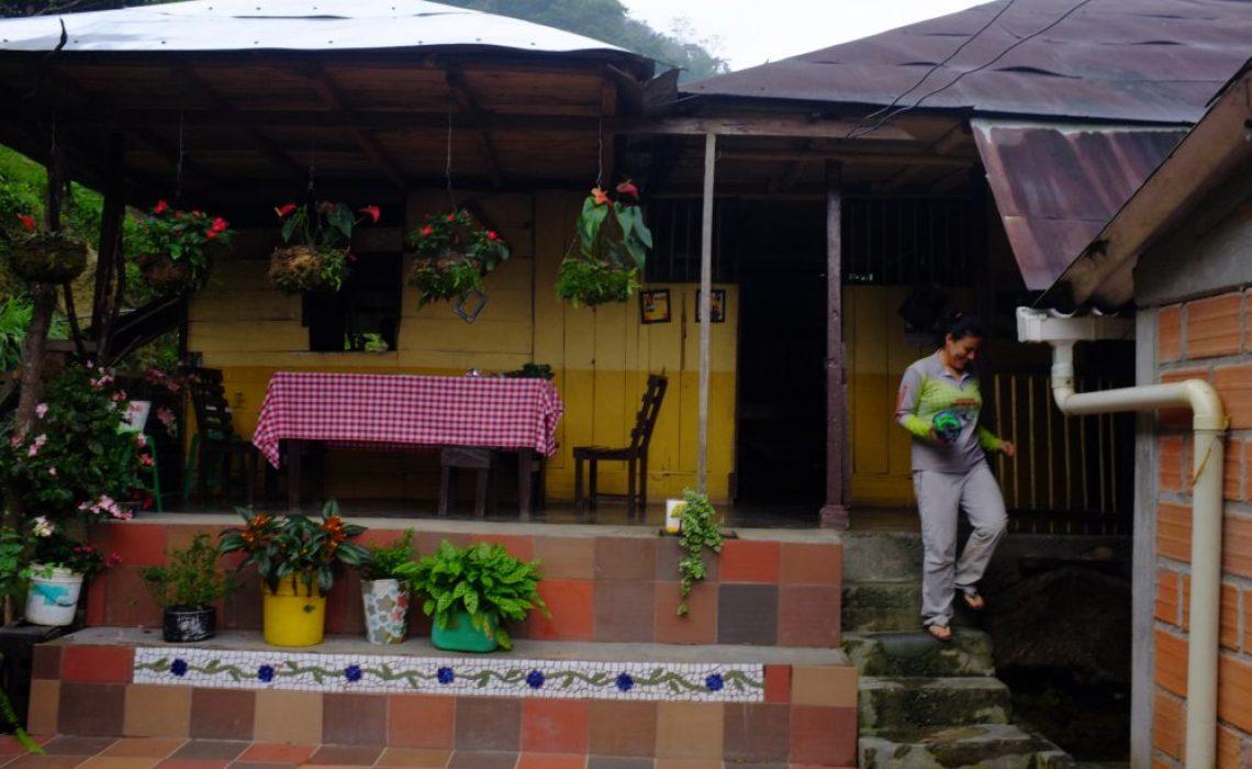 house accommodation jungle trek