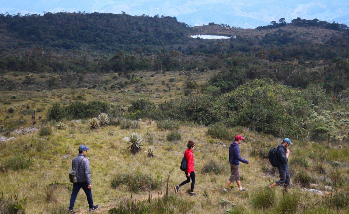 group walking trekking paramo