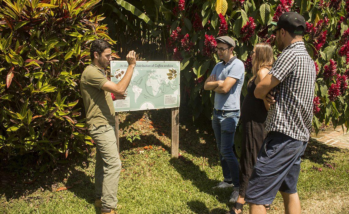 coffee tour farm finca tourists