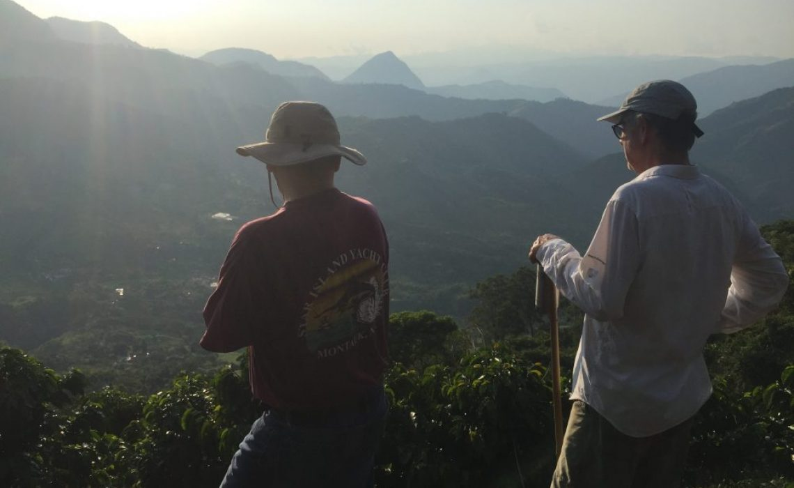coffee farm mountains antioquia