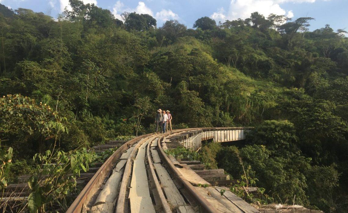 track hiker mountains coffee farm