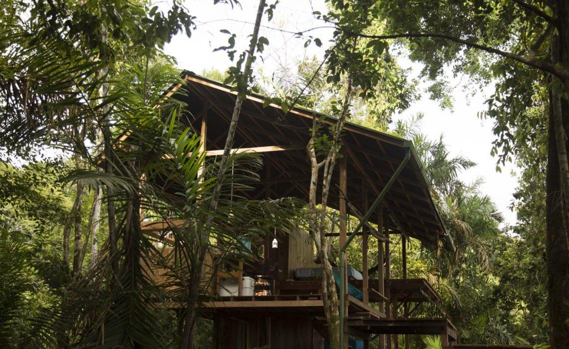 hotel choco colombia jungle