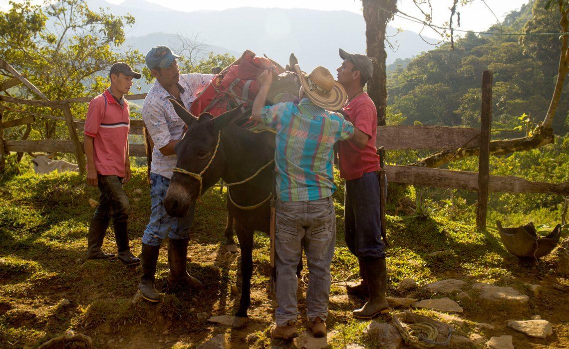 men loading a horse