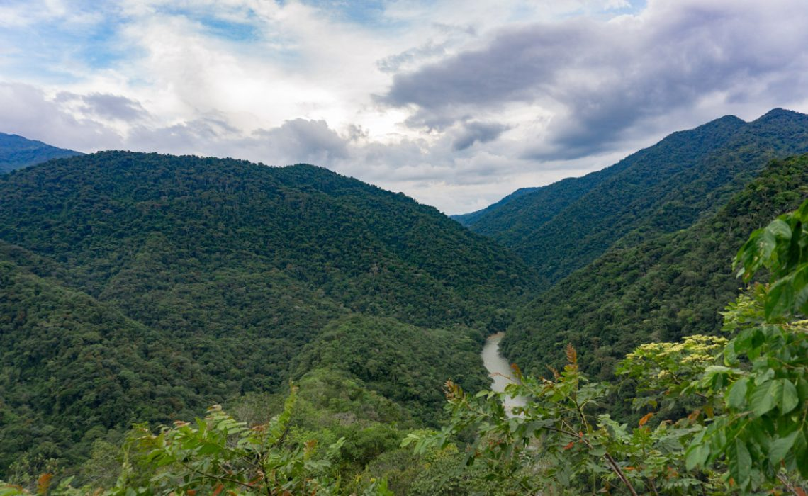 jungle mountains and river