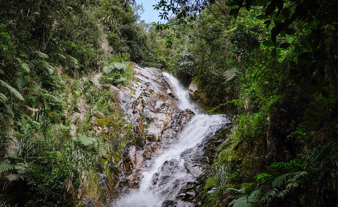 waterfall in jungle