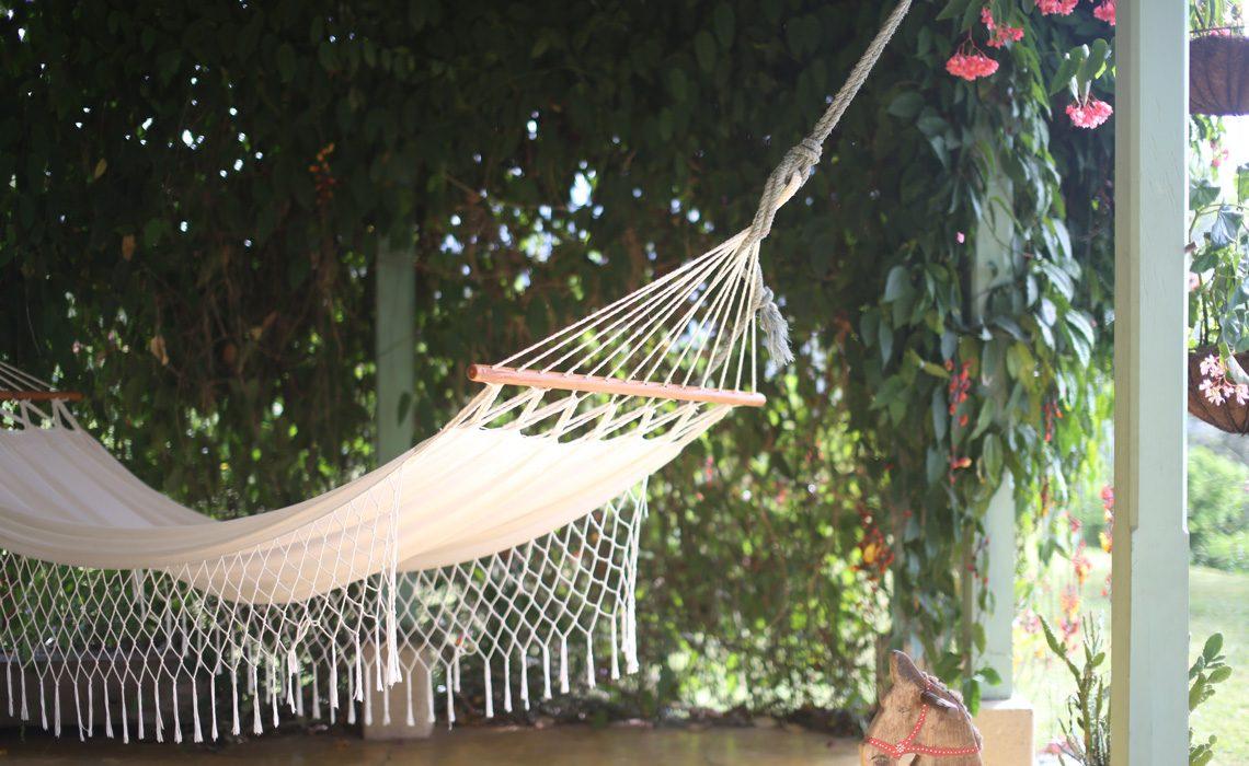 hammock fredonia coffee farm