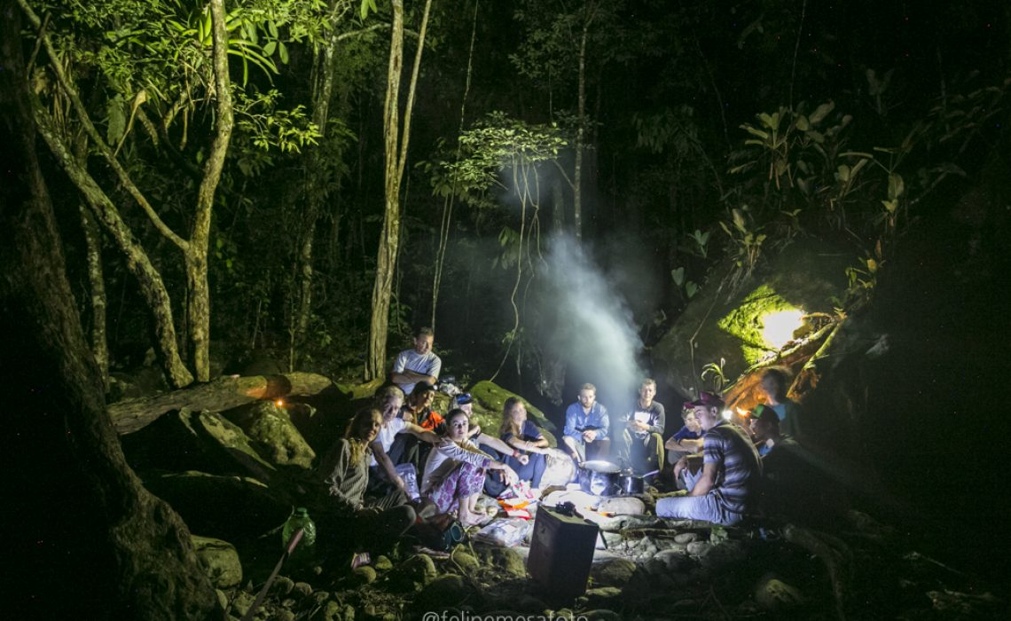 campfire jungle happy group