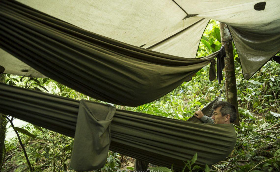 sheltered hammock rio samana jungle