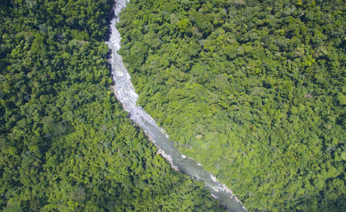 aerial view rio samana