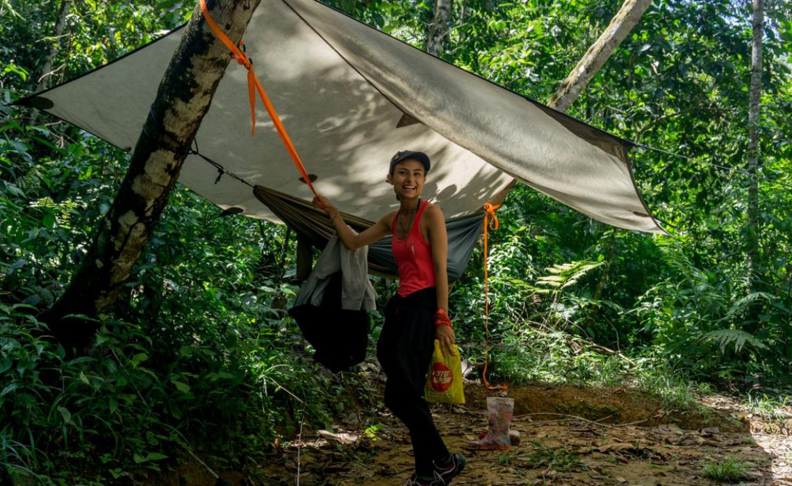 hammock jungle camp colombia