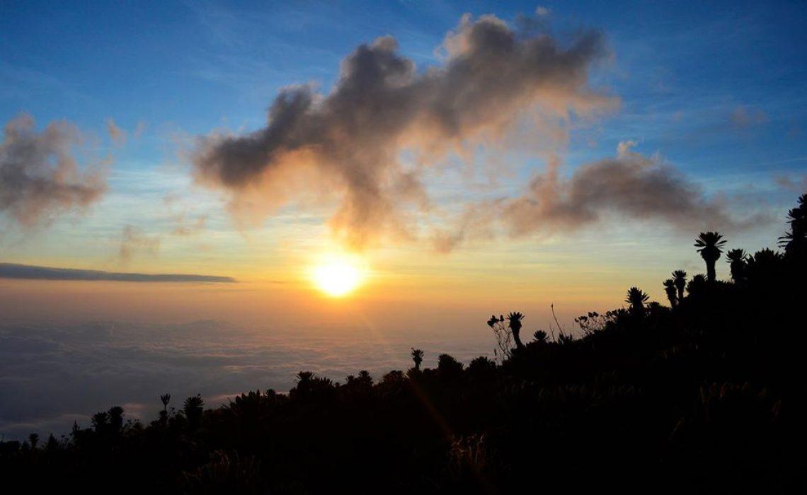 Sunset trekking coast